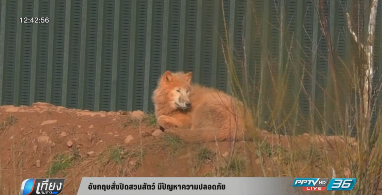 อังกฤษสั่งปิดสวนสัตว์ชื่อดัง ทำสัตว์ตายเกือบ 500 ตัว
