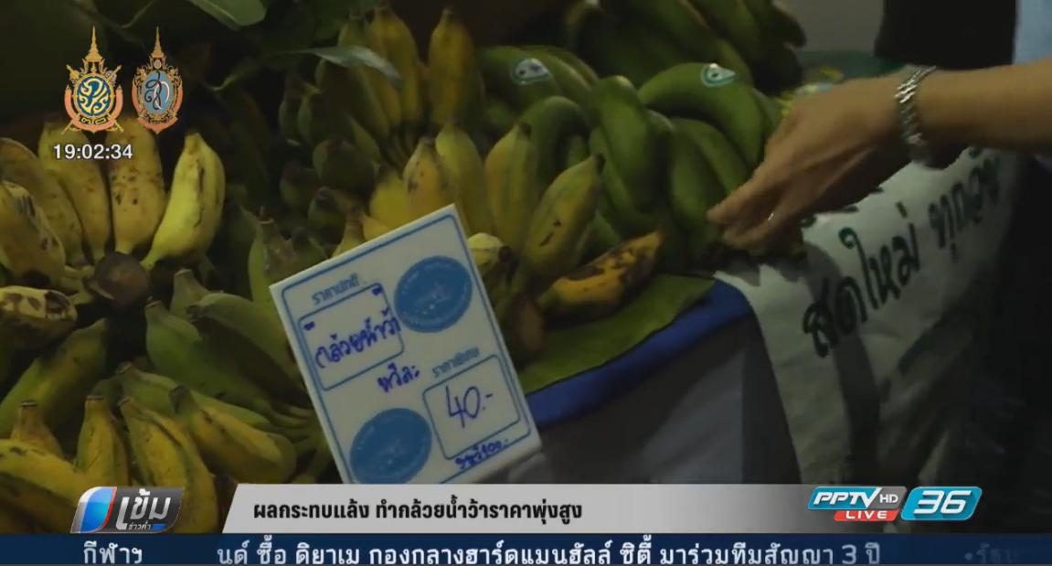 ผลกระทบแล้ง ทำกล้วยน้ำว้าราคาพุ่งสูง