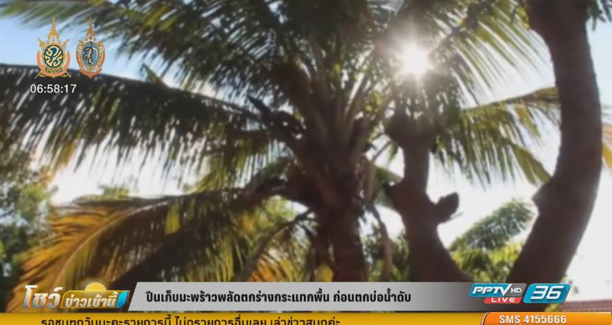 หนุ่มโคราชปีนเก็บมะพร้าวพลัดตกร่างกระแทกพื้น ก่อนจะไถลตกบ่อน้ำเสียชีวิต