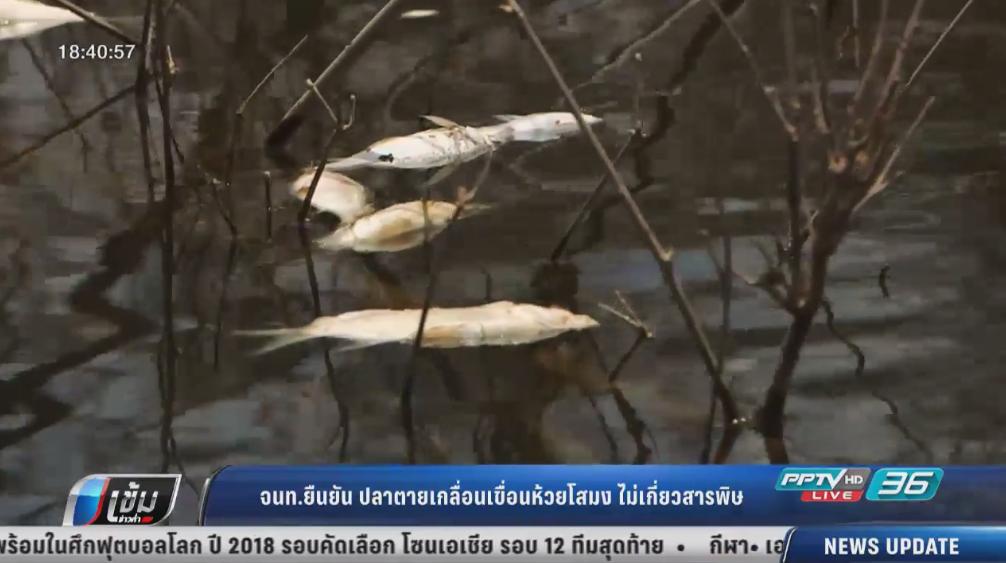 จนท.ยันปลาตายเกลื่อนเขื่อนห้วยโสมงไม่เกี่ยวสารพิษ