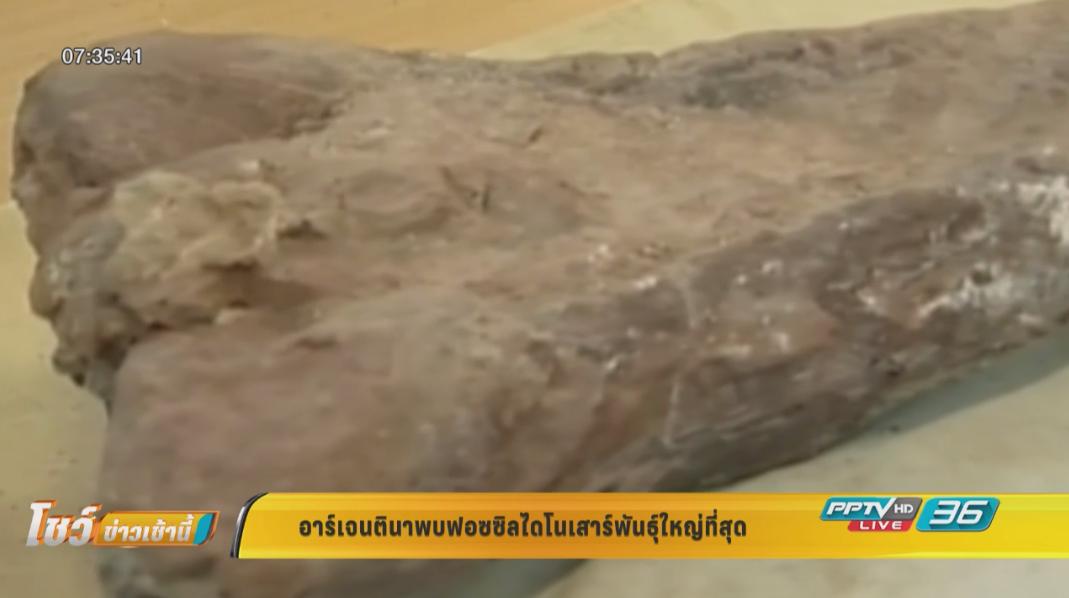 อาร์เจนตินาพบฟอซซิลไดโนเสาร์พันธุ์ใหญ่ที่สุด