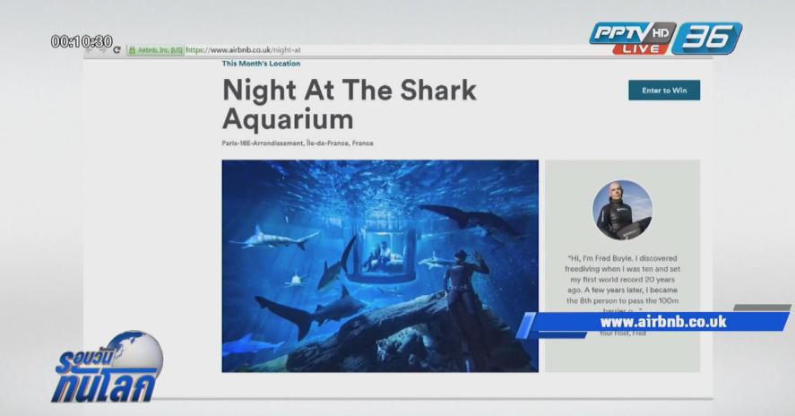 """""""Airbnb"""" หาผู้โชคดีพักฟรี!! ในห้องใต้น้ำร่วมกับฉลาม 35 ตัว"""