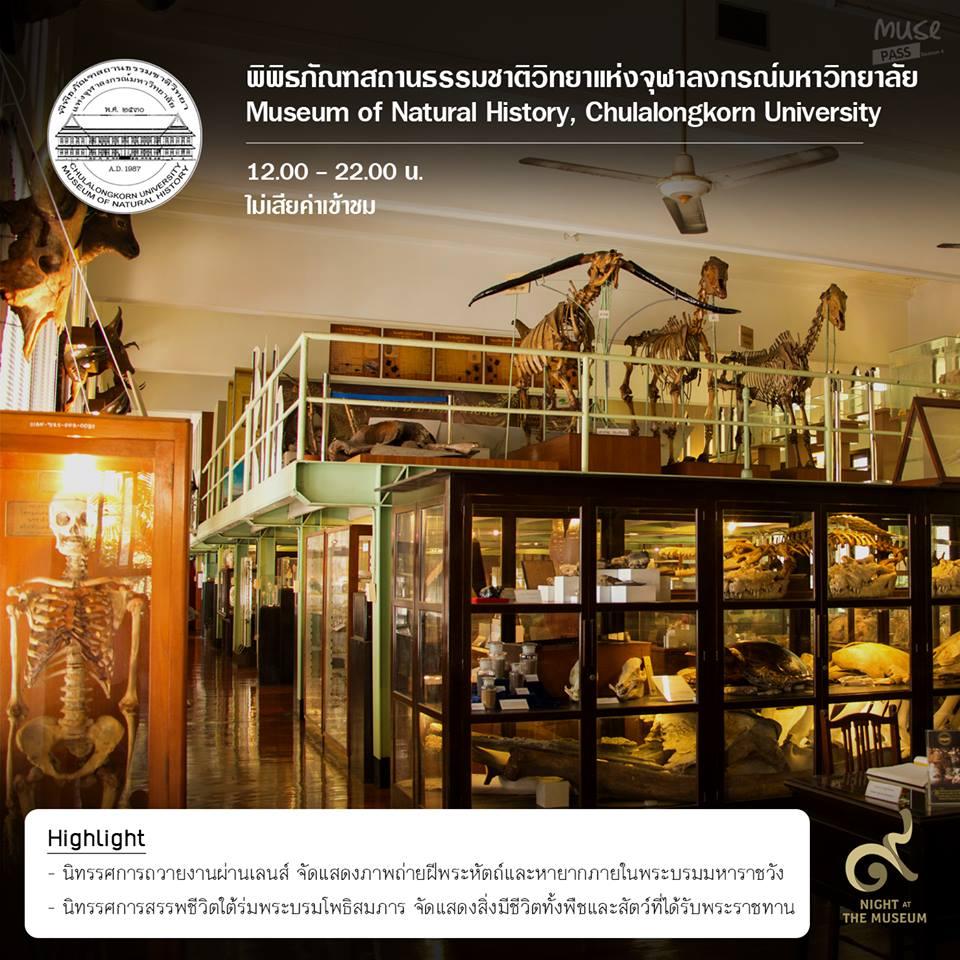 """ชวนเที่ยวชมเทศกาลพิพิธภัณฑ์ยามค่ำคืน """"Night at the Museum ๙"""""""