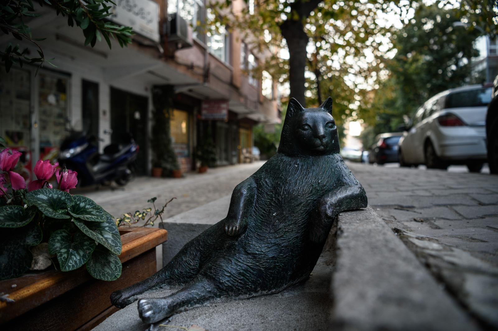 """อนุสาวรีย์ของ """"ทอมบิลี่"""" แมวสุดชิล ที่ตุรกี"""