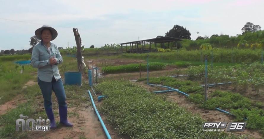 """""""รร.เกษตรอินทรีย์ซับรวงไทร"""" เศรษฐกิจพอเพียงที่จับต้องได้ (คลิป)"""