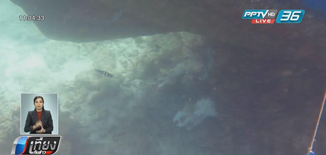 กู้เรือขยะอับปางเกาะพีพี พบปะการังเสียหายกว่า 100 ตารางเมตร