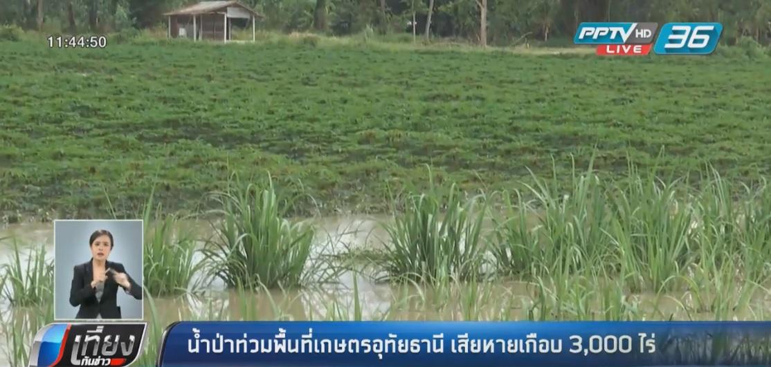 น้ำป่าทะลักท่วมพื้นที่เกษตร จ.อุทัยธานี เสียหายเกือบ 3,000 ไร่