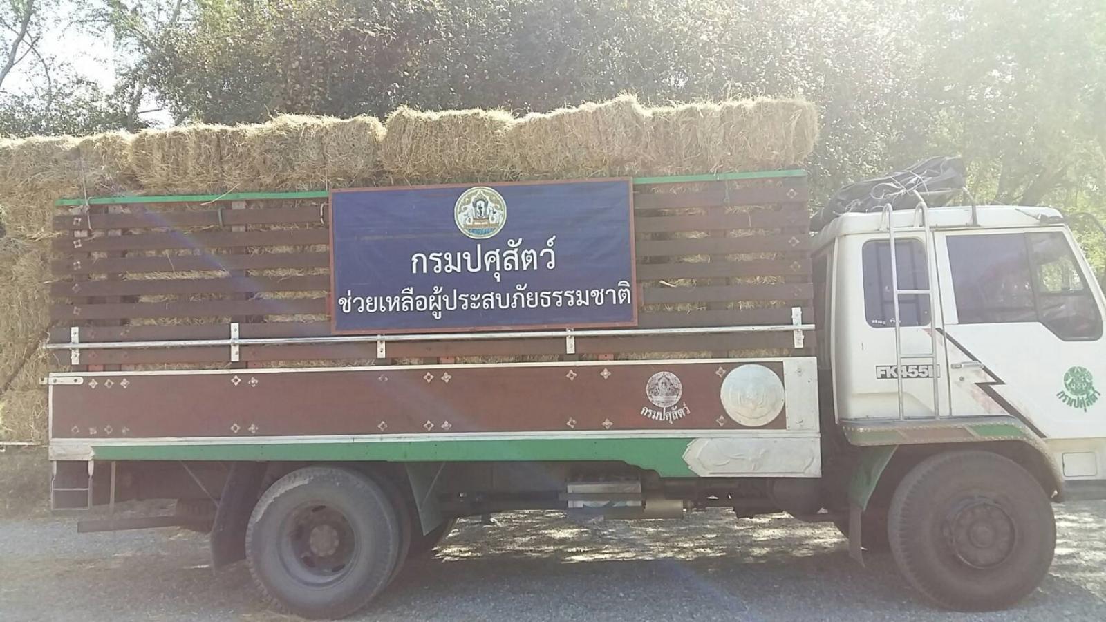 สมเด็จพระเทพฯ พระราชทานหญ้าแพงโกล่าแห้งช่วยผู้เลี้ยงสัตว์ภาคใต้