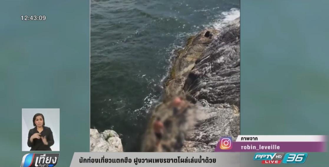 นักท่องเที่ยวแตกฮือฝูงวาฬเพชฌฆาตโผล่เล่นน้ำด้วย