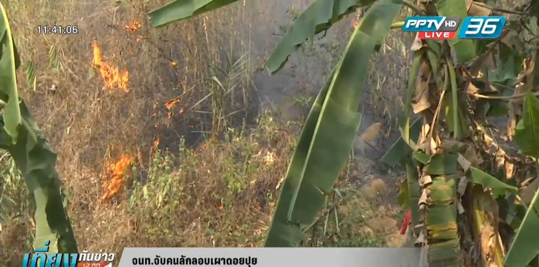 จนท.จับคนลักลอบเผาดอยปุย-เร่งดับไฟป่าพรุทะเลน้อย
