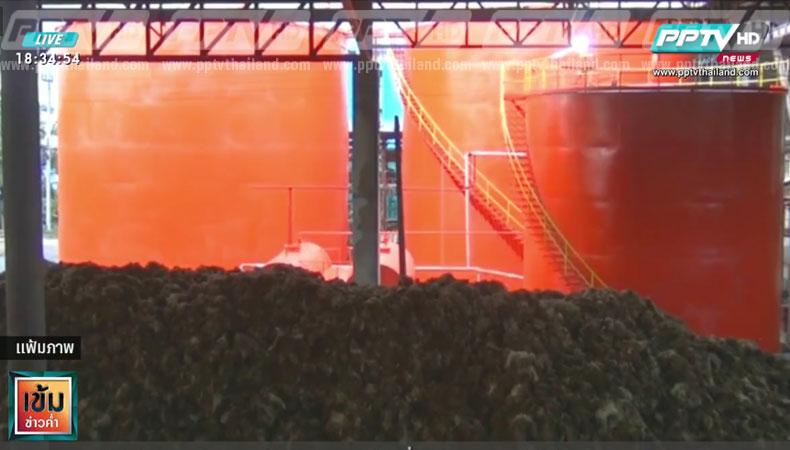ปาล์มน้ำมันกระบี่ปรับตัวสูงขึ้น สืบจากผลผลิตน้อยลง