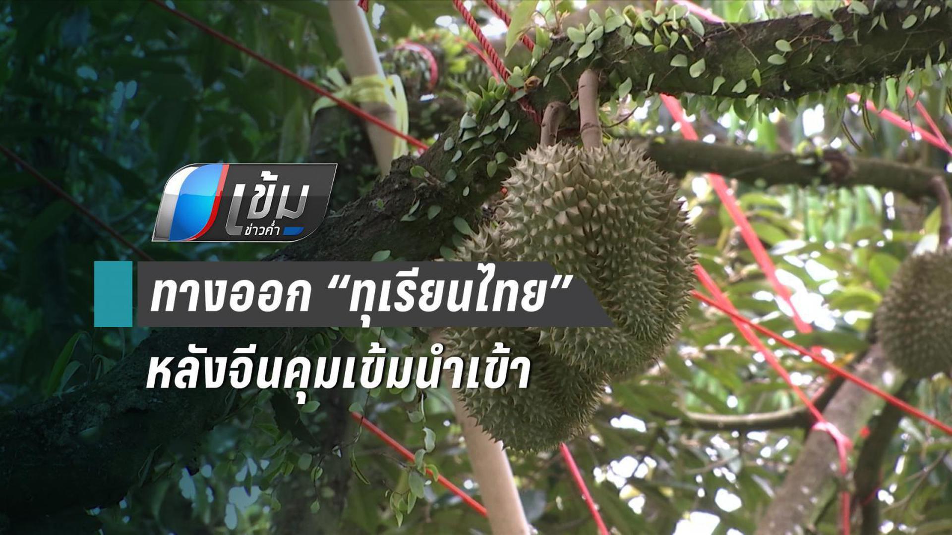 """ทางออก """"เกษตรกรไทย"""" หลังจีนคุมเข้มนำเข้าทุเรียน"""