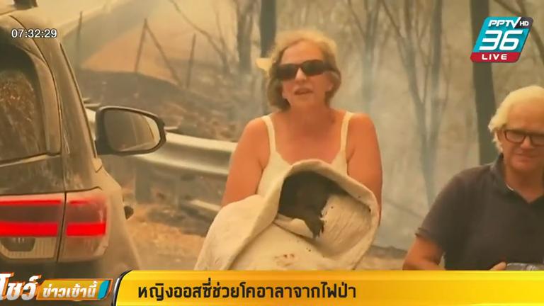 หญิงออสซี่ช่วยโคอาลาจากไฟป่า