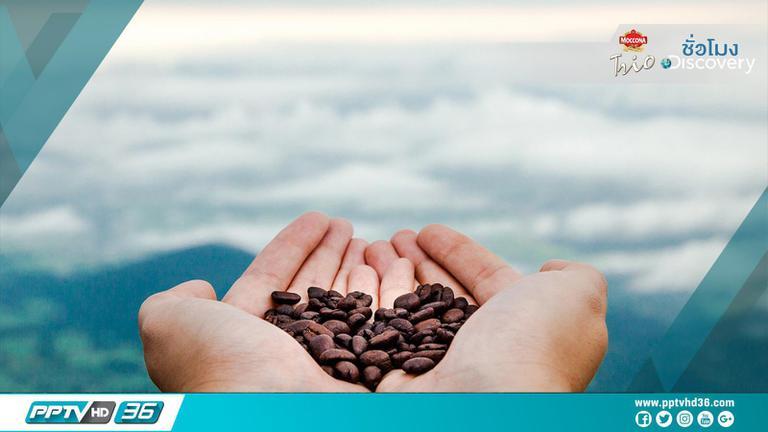 7 ข้อเท็จจริงที่คุณอาจไม่รู้เกี่ยวกับกาแฟ