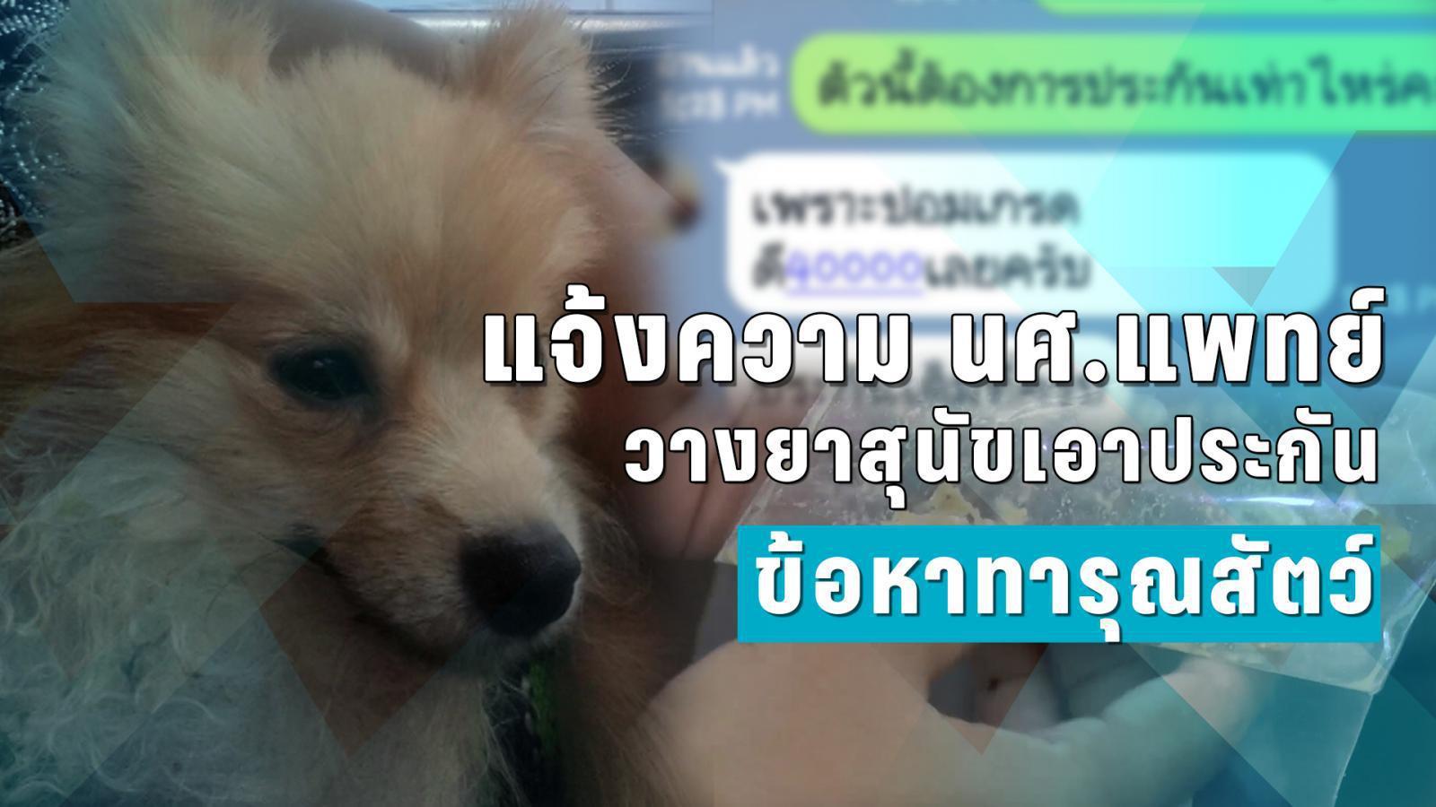 แจ้งความ นศ.แพทย์วางยาสุนัขเอาประกัน ข้อหาทารุณสัตว์
