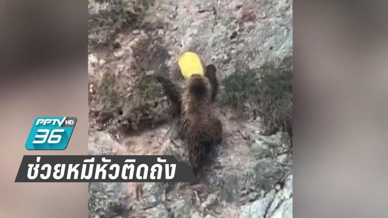 """""""ตำรวจจีน"""" ช่วย หมีหัวติดถัง"""
