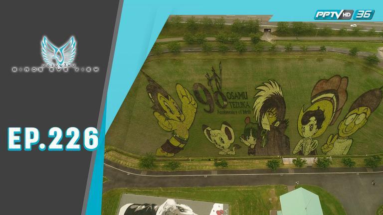 Tanbo Art งานศิลป์ มหัศจรรย์จากรวงข้าว.....แห่งเมืองอาโอโมริ