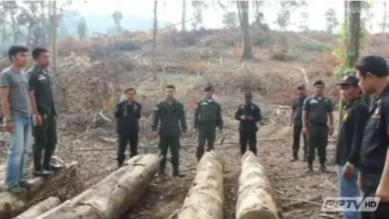 ตรวจสอบบุกรุกป่าบนเกาะช้าง จ.ตราด