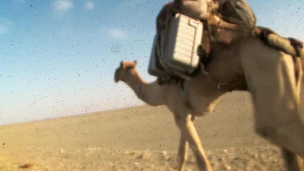 """ชั่วโมง Discovery ตอน ดินแดนลึกลับ """"ทะเลทรายเอทิโอเปีย"""""""