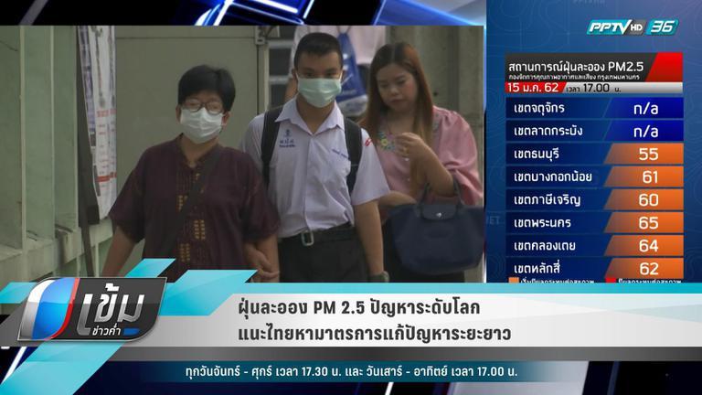 ฝุ่นละออง PM 2.5 ปัญหาระดับโลก แนะไทยหามาตรการแก้ปัญหาระยะยาว