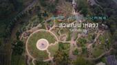 ตอน แอ่วเหนือ ไหว้พระธาตุดอยตุง มหัศจรรย์ดอกซากุระเมืองไทย