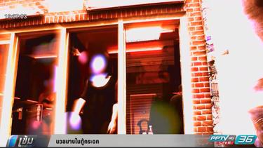 นวลนางในตู้กระจกที่ประเทศเนเธอร์แลนด์