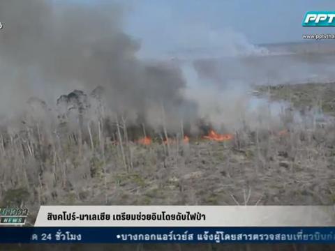 สิงคโปร์-มาเลเซีย เตรียมช่วยอินโดฯดับไฟป่า