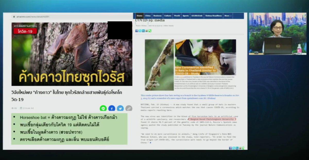 """เปิดหลักฐาน """"ค้างคาวมงกุฎ"""" ในไทย"""