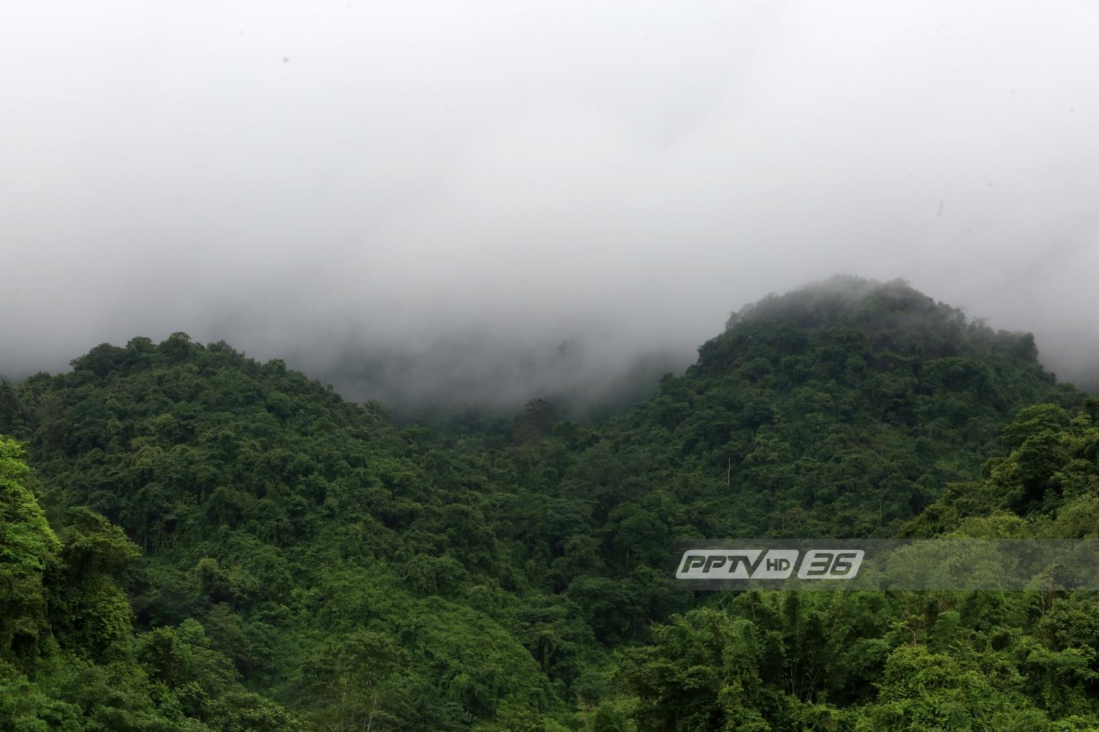 อุตุฯ เผยภาคเหนือมีฝนฟ้าคะนอง ตกหนักบางพื้นที่