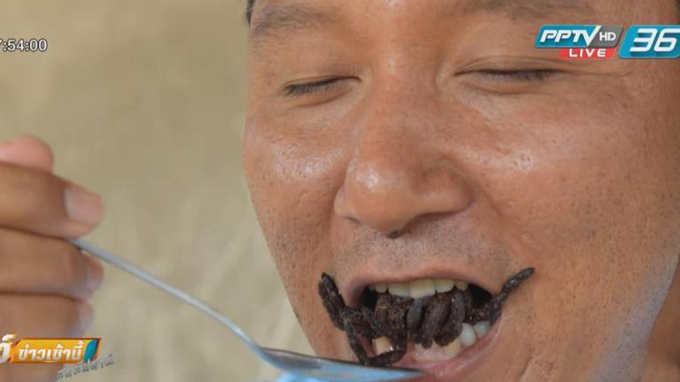กัมพูชาหวั่นแมงมุมยักษ์สูญพันธุ์ เหตุทำลายป่า-จับไม่ยั้ง