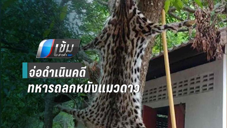 ชุดพญาเสือ เตรียมดำเนินคดี ทหารยศ ส.อ. ถลกหนังแมวดาว