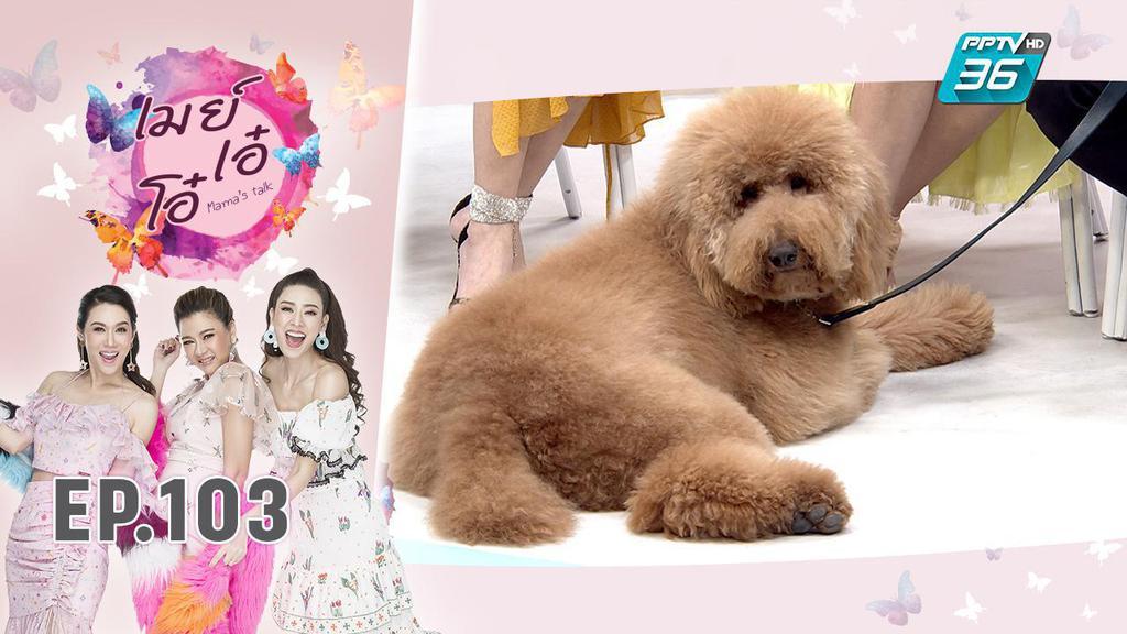 รู้จักเจ้าของแฮชแท็ก #โคโค่คือหมาของพี่ดุ๊ก