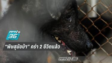 สั่งปศุสัตว์นครศรีฯฉีดวัคซีนป้องพิษสุนัขบ้า พบปีนี้คร่าชีวิต 2 คนแล้ว