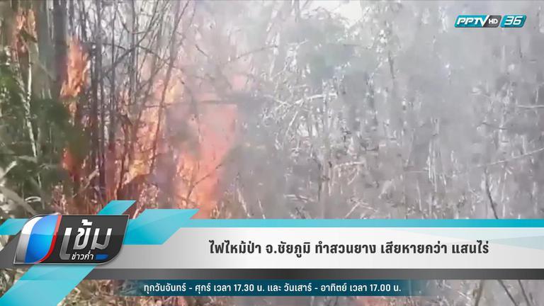 ไฟไหม้ป่า จ.ชัยภูมิ ทำสวนยาง เสียหายกว่า แสนไร่