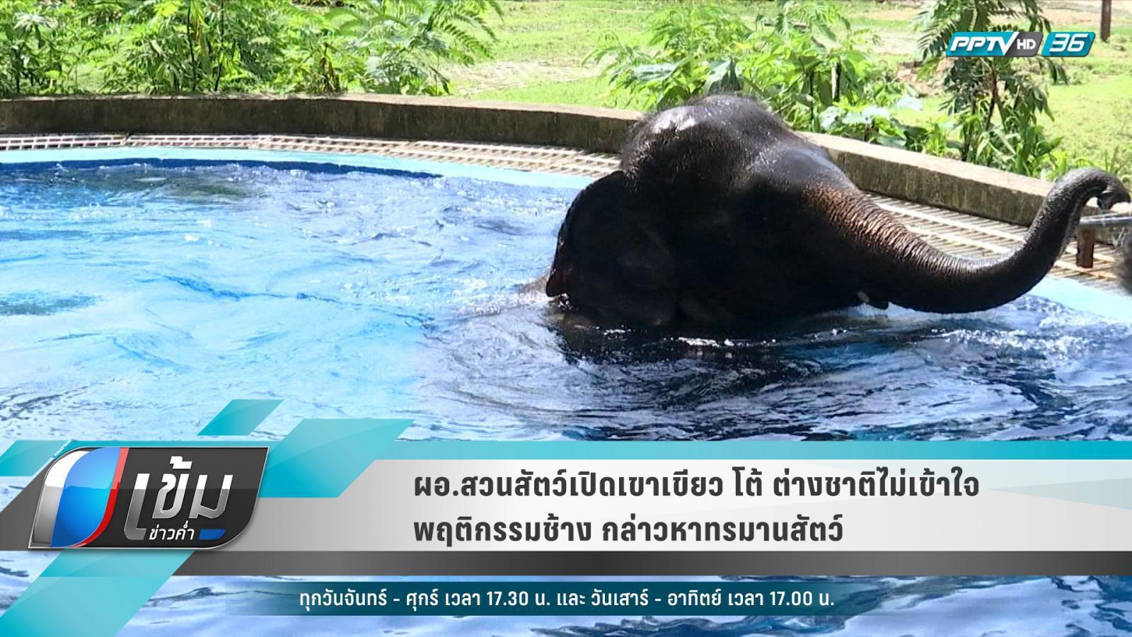 ผอ.สวนสัตว์เปิดเขาเขียว โต้ ต่างชาติไม่เข้าใจพฤติกรรมช้าง กล่าวหาทรมานสัตว์