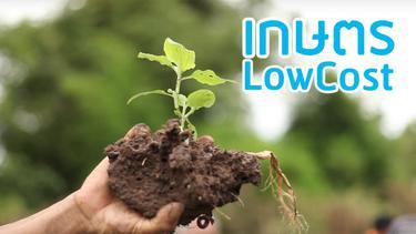 """ชี้ช่อง """"ลดต้นทุน สร้างกำไร"""" จากพื้นที่ทำกิน ด้วยเกษตร LowCost"""