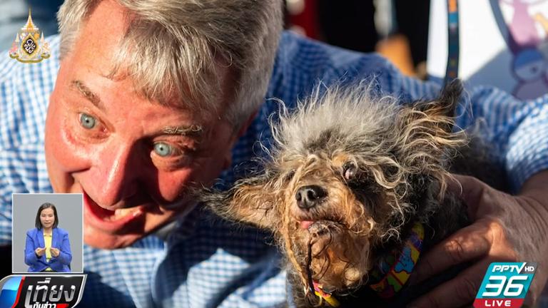 """เผยโฉมหน้า """"สุนัขน่าเกลียด""""ที่สุดในโลกประจำปี 2019"""