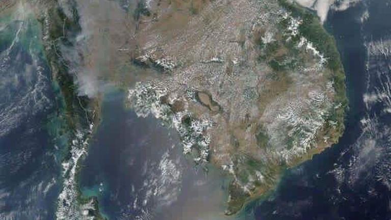 ป่าไม้ไทยลดลงปีละกว่า 1 ล้านไร่