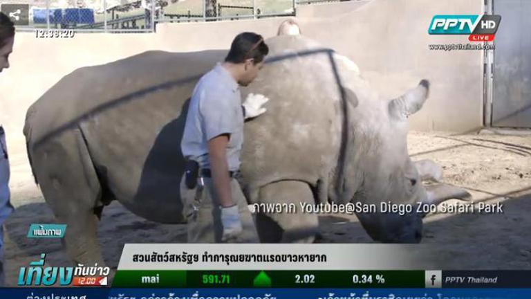 สวนสัตว์สหรัฐฯทำการุณยฆาตแรดขาวหายาก (คลิป)