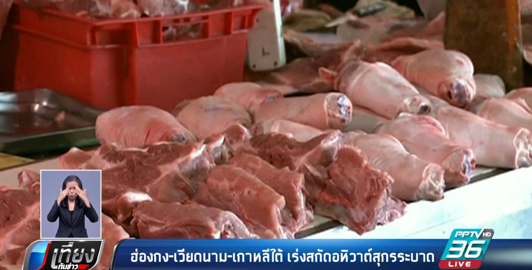 ฮ่องกง-เวียดนาม-เกาหลีใต้ เร่งสกัดอหิวาต์สุกรระบาด