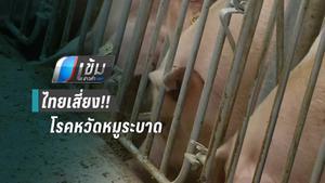 ผู้เชี่ยวชาญ เตือนโรคหวัดหมูอาจระบาดเข้าไทย