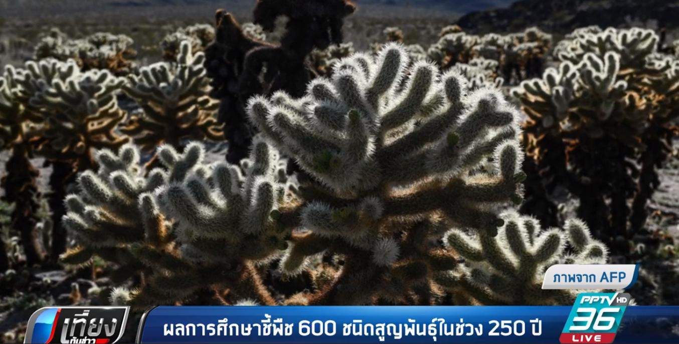 ผลการศึกษา ชี้พืช 600 ชนิดสูญพันธุ์ในช่วง 250 ปี