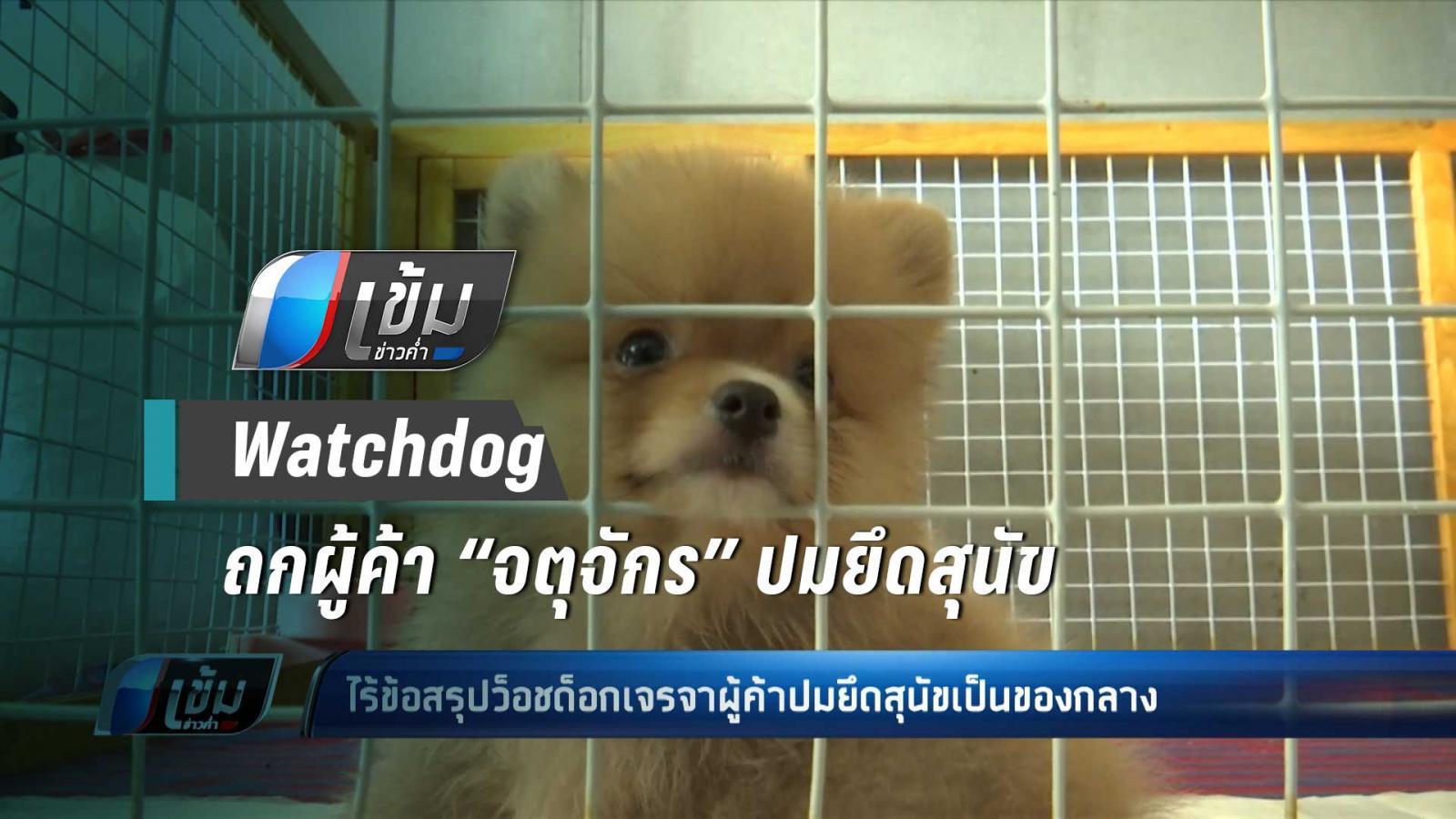 """Watchdog  ถกผู้ค้า """"จตุจักร"""" ปมยึดสุนัข"""