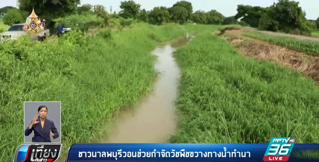 ชาวนาลพบุรีวอนช่วยกำจัดวัชพืชขวางทางน้ำทำนา