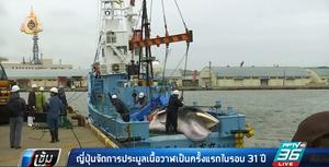 ญี่ปุ่นจัดการประมูลเนื้อวาฬเป็นครั้งแรกในรอบ 31 ปี