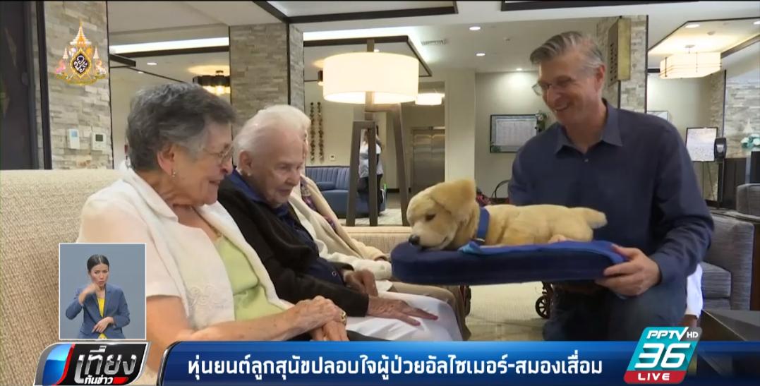 หุ่นยนต์ลูกสุนัข ช่วยดูแลผู้ป่วยอัลไซเมอร์ สมองเสื่อม