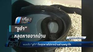 พบแล้ว !! งูดำ หลุดหายจากบ้าน ย่านพญาไท