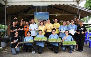 """หอการค้าไทย ดันโครงการ """"ชาวนาอัจฉริยะ"""" มุ่งเน้นไร้สารเคมี-ลดการขาดทุน"""