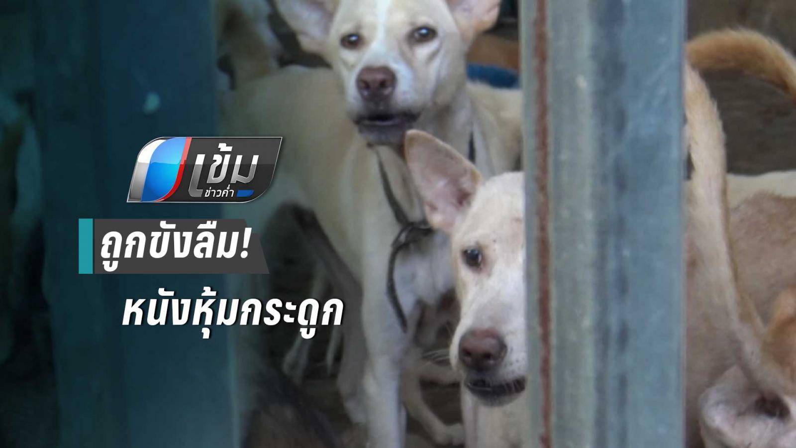 ร้องช่วยสุนัขกว่า 20 ตัว ถูกขังลืมในบ้าน สภาพผอมโซ-หนังหุ้มกระดูก