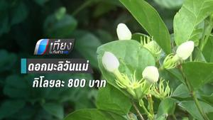 ภัยแล้งส่งผล ดอกมะลิวันแม่พุ่งถึง 800 บาทต่อกิโลกรัม